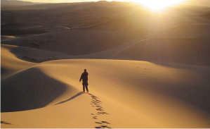 Man In Desert