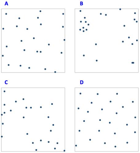 25 Random Dots